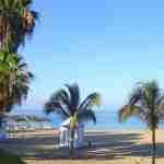 Playa del Duque Sur - foto van het strand met palmbomen en strandhutjes